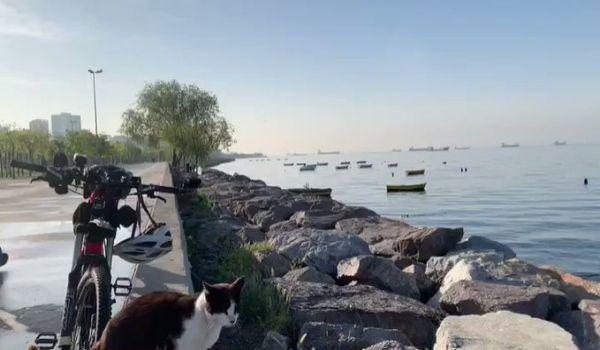 Kordonboyu sahil video: 26 Nisan